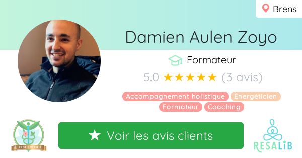 Consulter le profil de Damien Aulen Zoyo